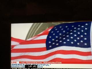Capitol Flag