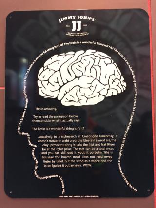 ImmyJohn brain