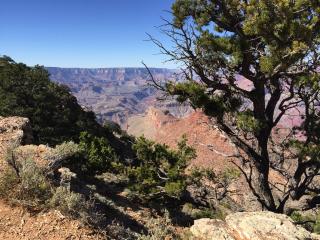 Grand Canyon view 2